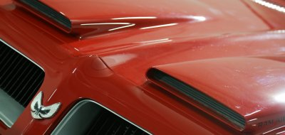Pontiac Firebird Formula 1974 hood